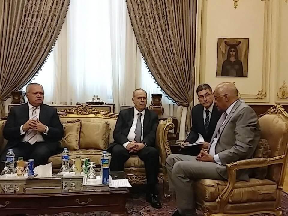 kasoulides me egyptian parliament